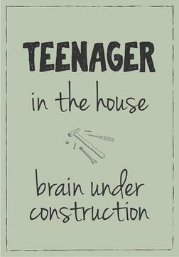 Teenager in the house brain under construction